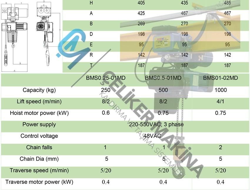 Monoray Vinç 250 kg Çift Hız
